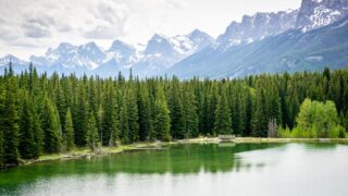 The Johnson Lake hike is one of the best easy hikes in Banff, Alberta