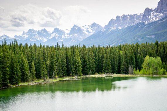 Johnson Lake Hike – Banff