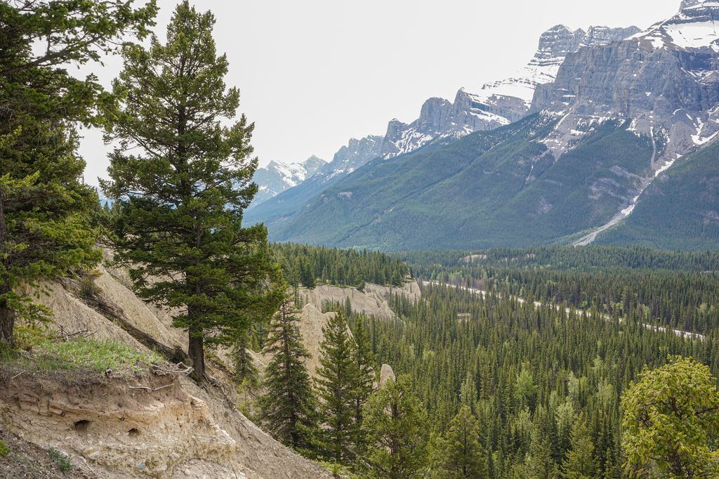 The outer loop on the Johnson Lake Trail has views of hoodoos, Mt. Rundle and the TransCanada Highway