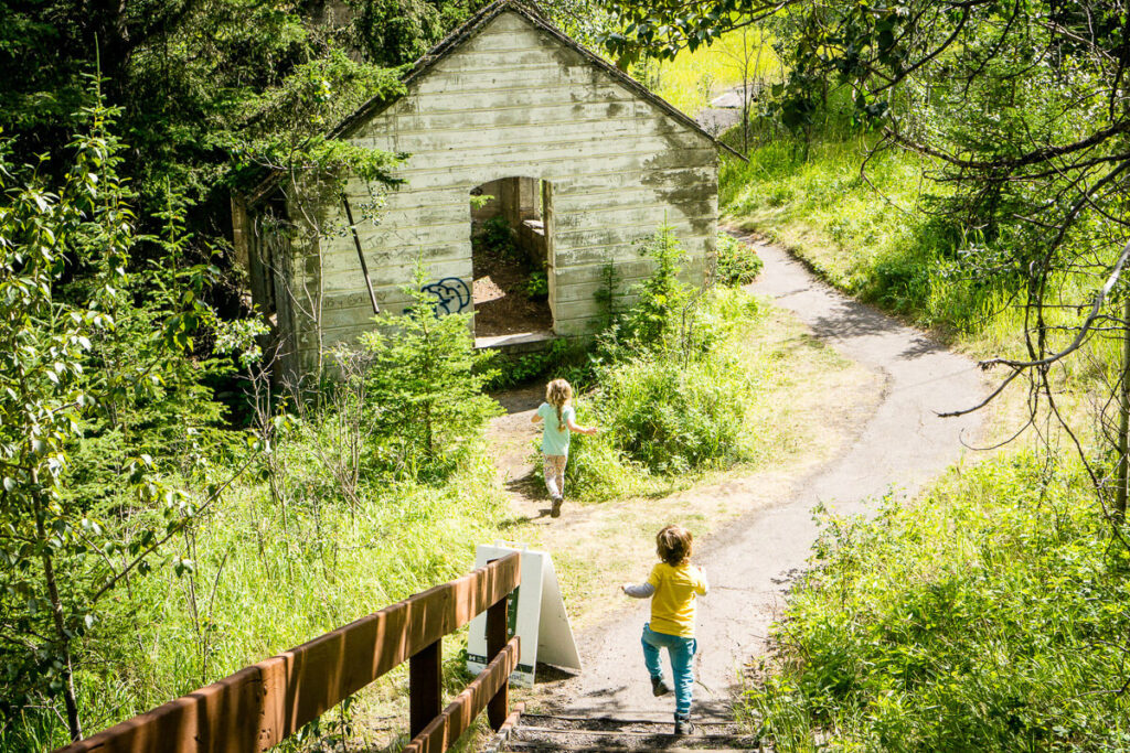 easy hike in Banff with kids - Lower Bankhead