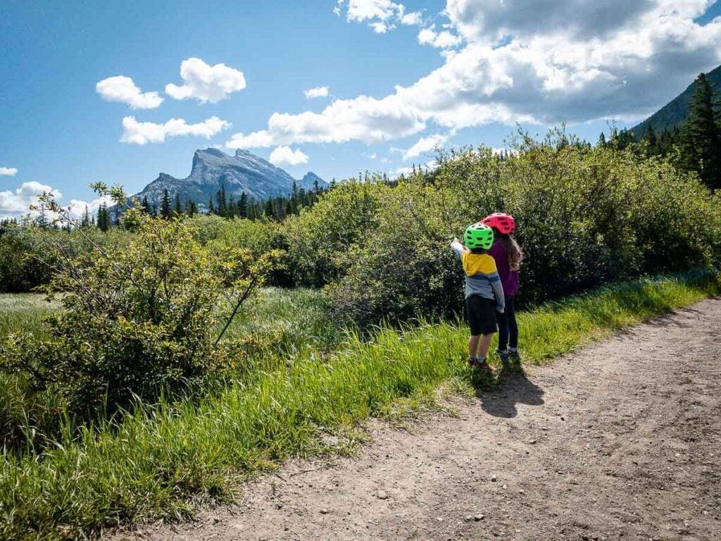 Marsh Loop - short Banff hike