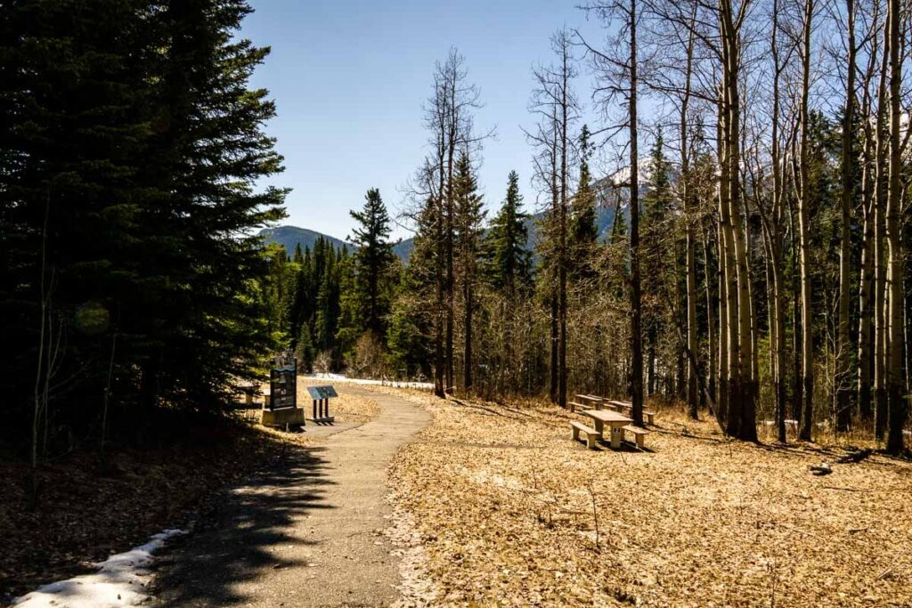 Muleshoe Picnic Area along Bow Valley Parkway in Banff