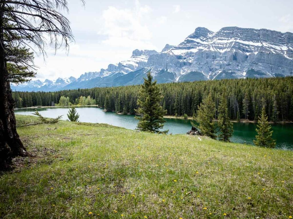 With views of the Banff lake and Mount Rundle, the small hill on the north shore is the best picnic spot at Johnson Lake