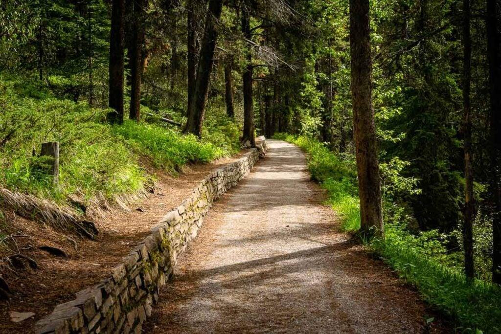 Start of Johnston Canyon Trail through lush forest