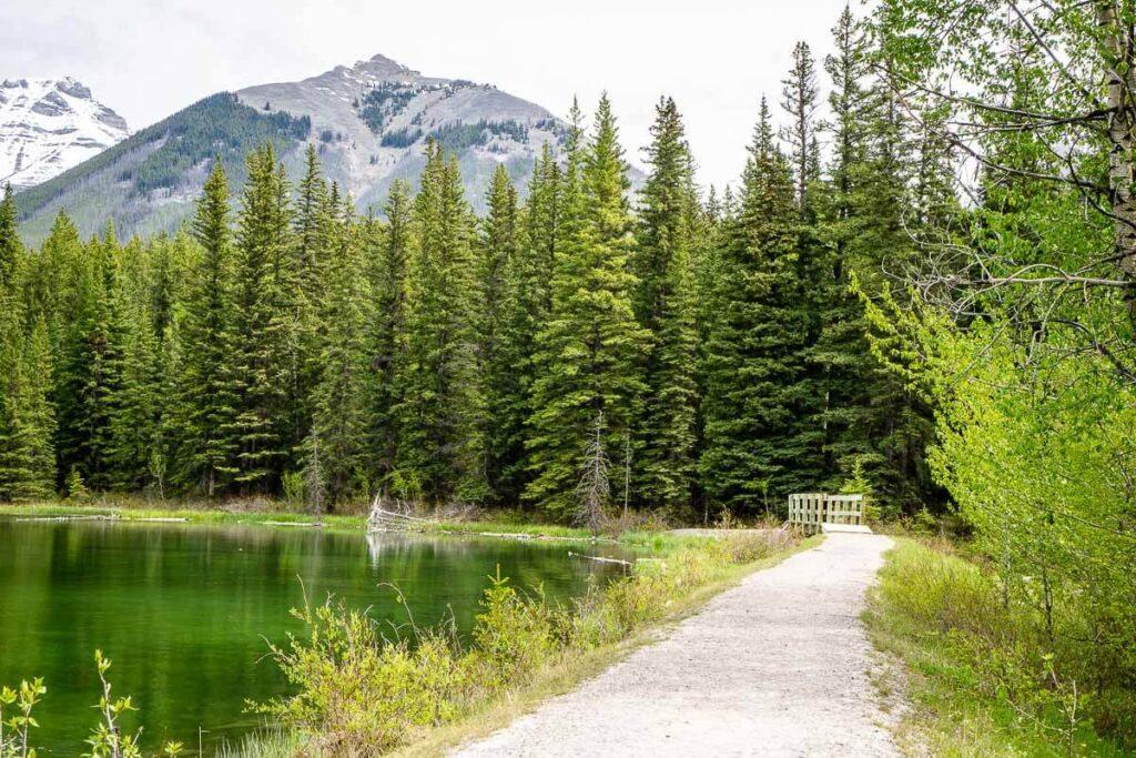 Johnson Lake Trail Banff Canada