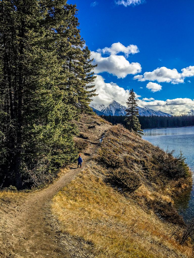 easy hikes in Banff - Johnson Lake with kids