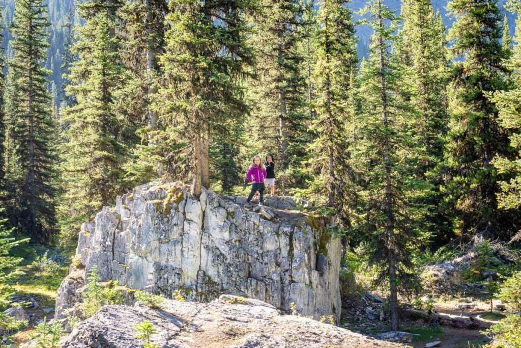 Black Prince Interpretive Trail - one of best Easy Hikes - Kananaskis