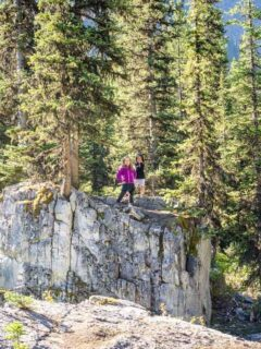 Black Prince Interpretive Trail - one of Kananaskis Easy Hikes