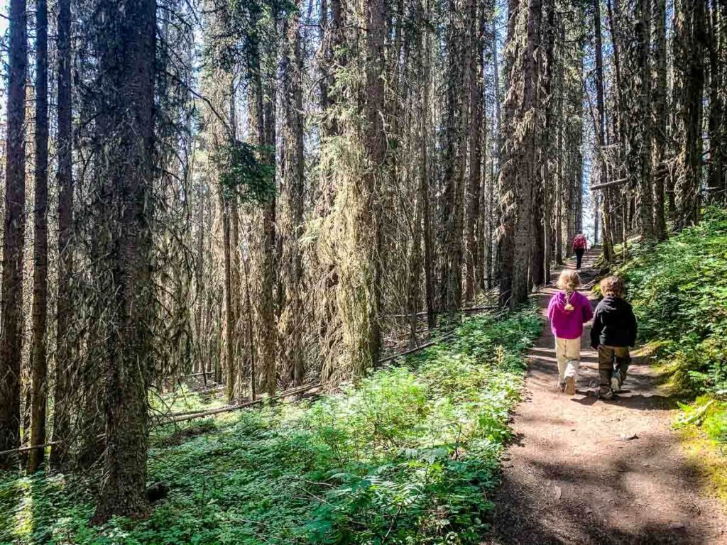 hiking C Level Cirque in Banff with Kids