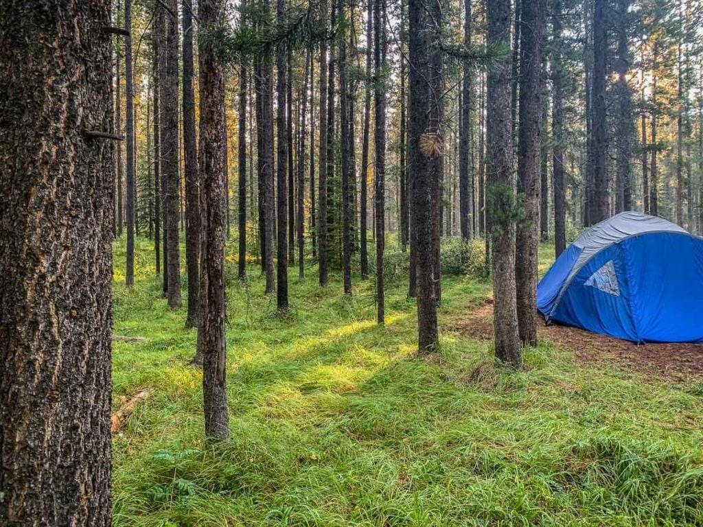 Banff camping at Two Jack Main campground
