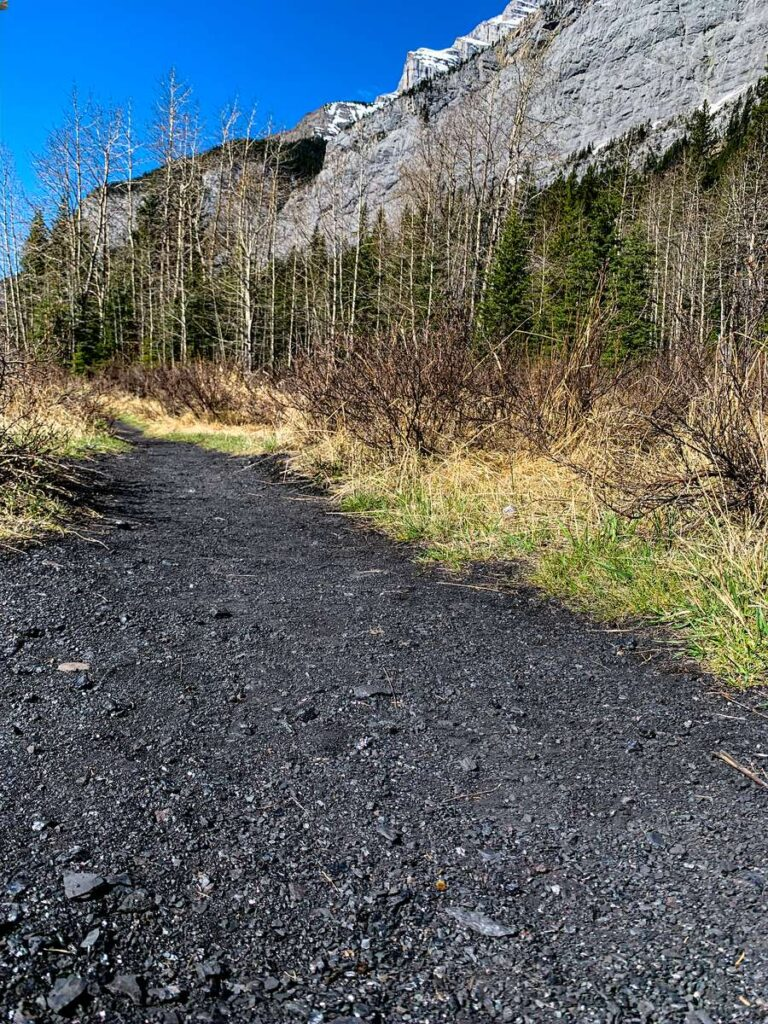 Even the Bankhead hiking trail is made from coal on this easy Banff walk