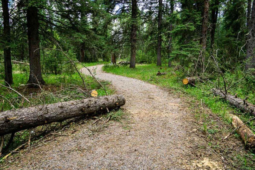 Widow Maker Trail via Canoe Meadows