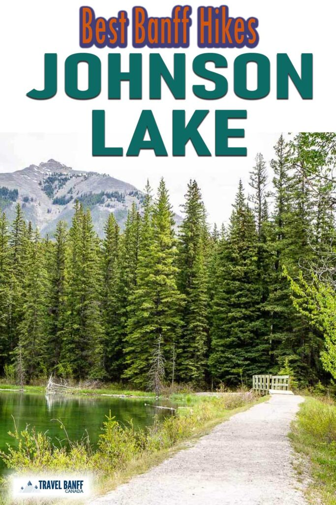 One of the most underrated hiking trails in Banff National Park, the Johnson Lake hike is an enjoyable short hike around the shores of a beautiful lake. On this easy Banff hike you'll enjoy a wide variety of beautiful Banff scenery, including beautiful stretches of forest, views of Johnson Lake and the surrounding mountains.
