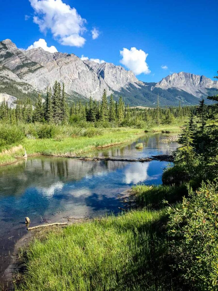 Many Springs Hike in Bow Valley Provincial Park area of Kananaskis
