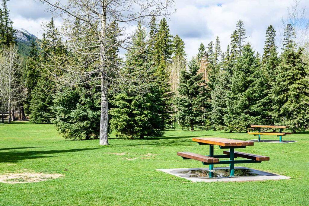 Picnic area - Banff Central Park