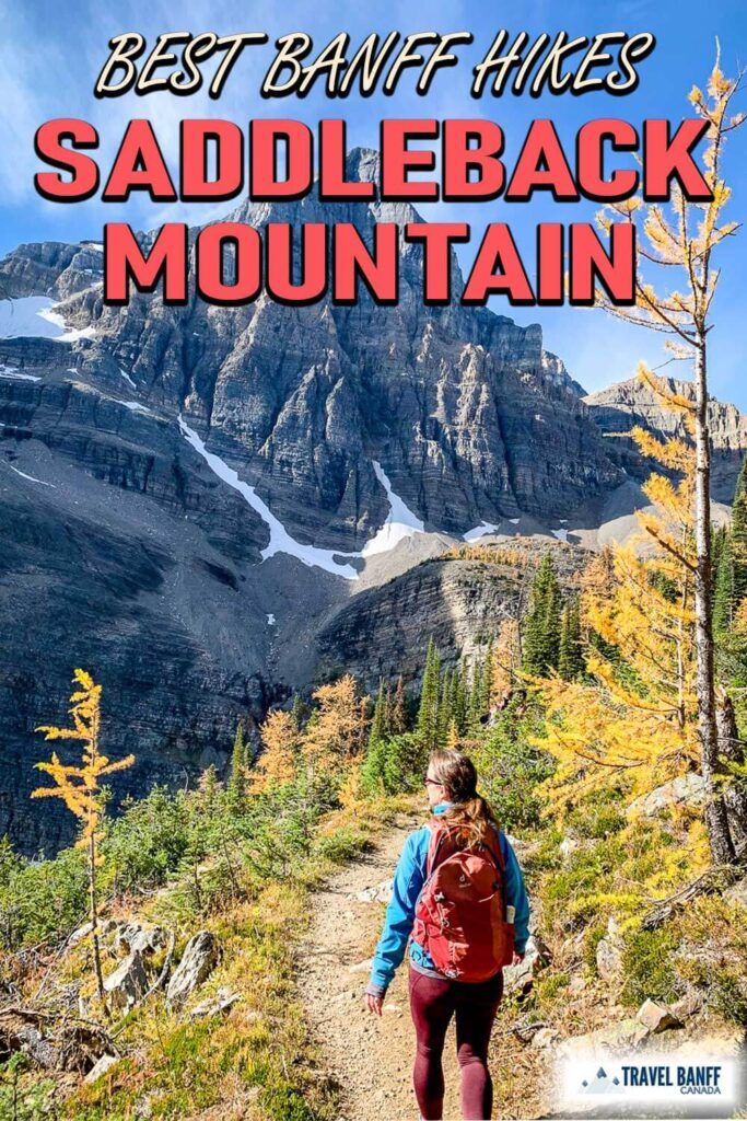 Don't miss this amazing Banff hike! The Saddleback Pass hike winds its way from the turquoise shores of Lake Louise, up the forested northern slopes of Fairview Mountain to a beautiful open meadow with spectacular views.