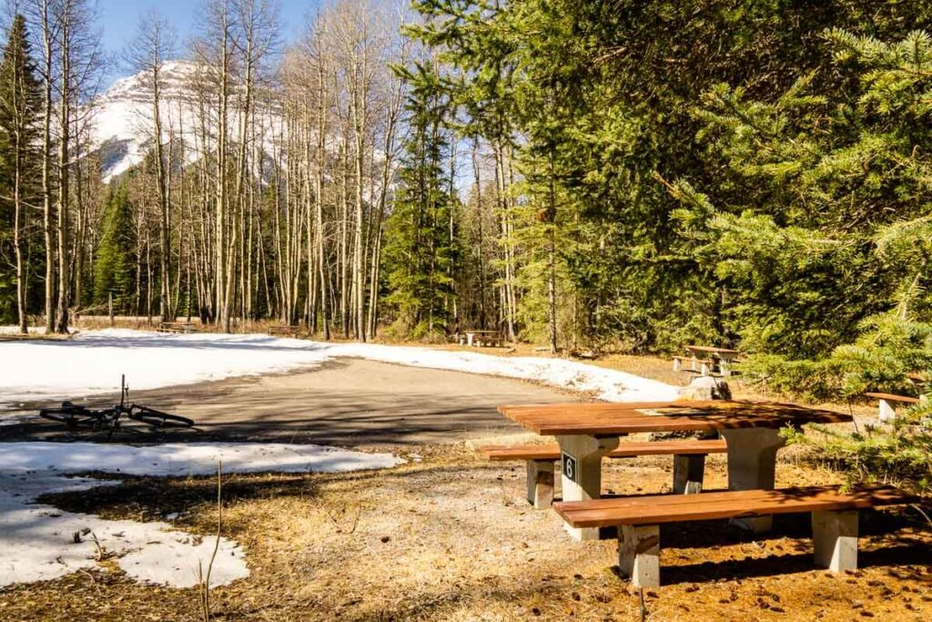 Banff picnic spots - Sawback on Bow Valley Parkway