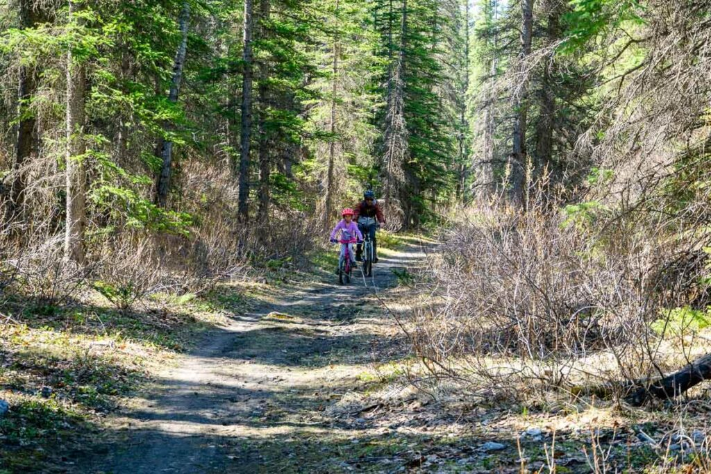 biking trail from Cascade Ponds to Lower Bankhead