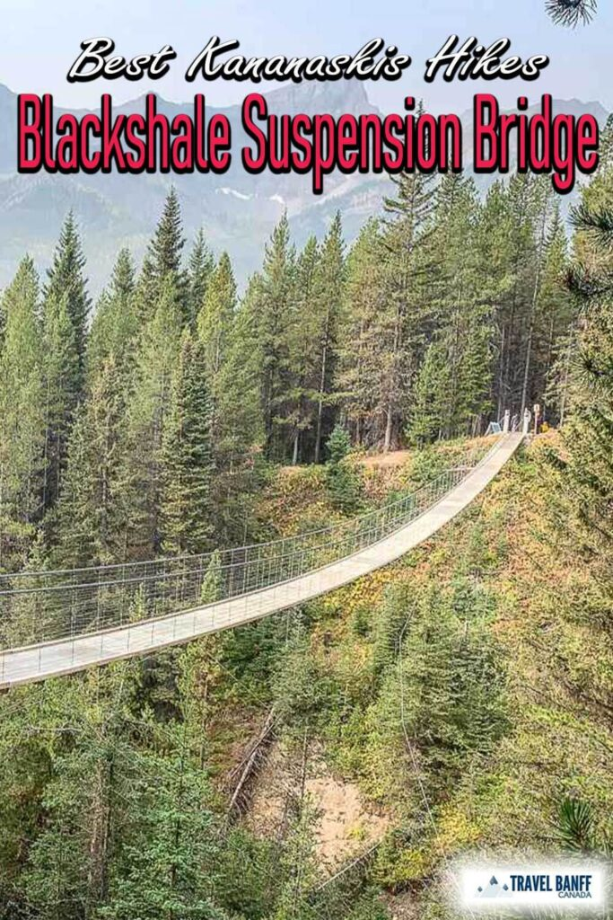 The easy Kananaskis hike to the Blackshale Suspension Bridge is a pleasant and relatively easy walk along the High Rockies Trail from the Black Prince day use area.