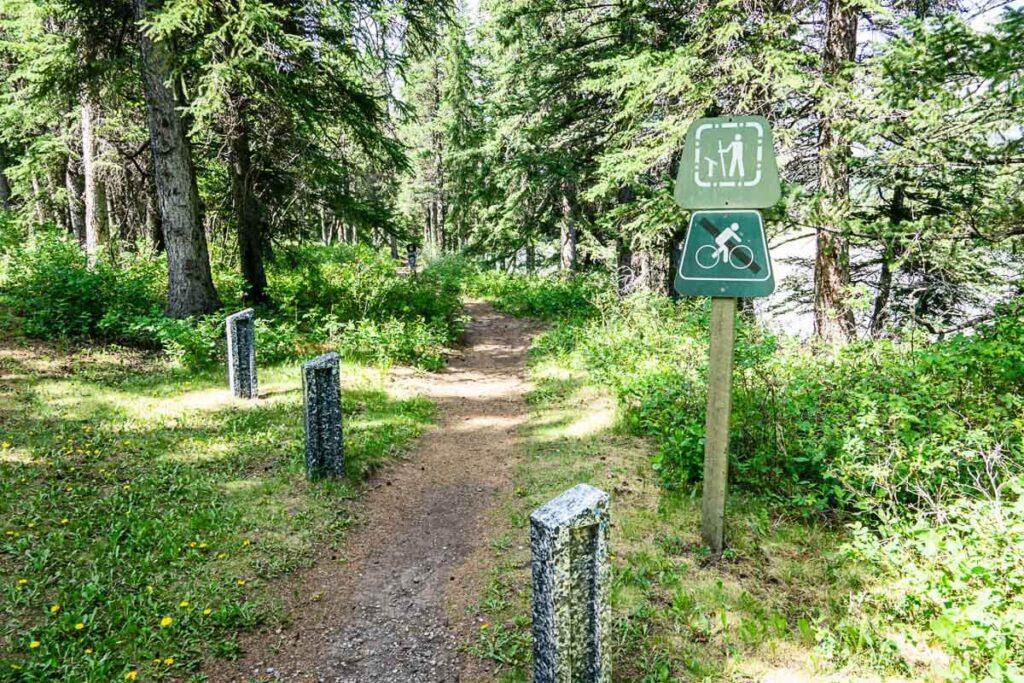 Bow River Interpretive Trail - short Kananaskis hike