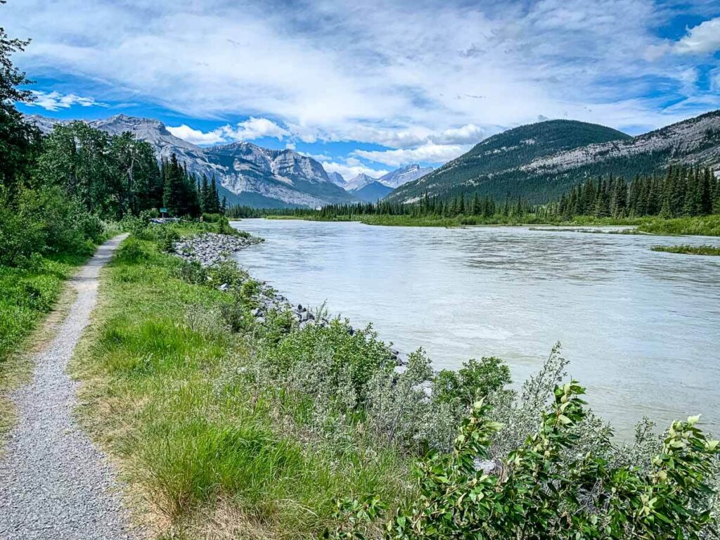 Bow River trail near whitefish Day use