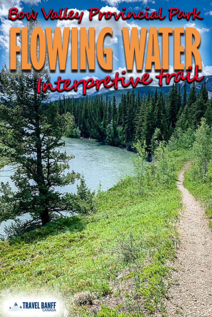 Flowing Water Interpretive Trail offers some incredible scenery for such a short hike in Kananaskis. Complete with river views, mountain views and even a beaver dam, this easy Kananaskis hike is well worth the time.