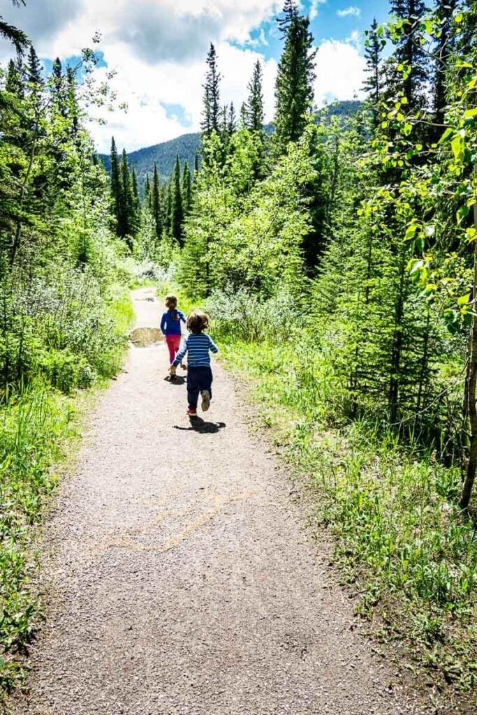 kid friendly hikes in Kananaskis - Many Springs Interpretive Loop