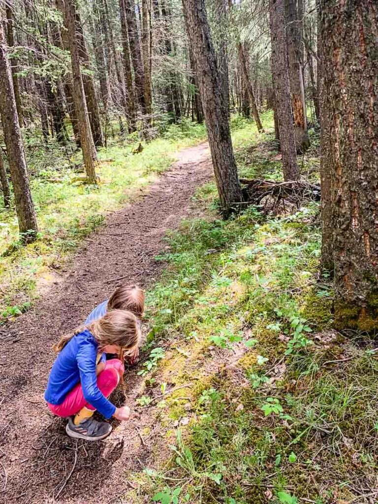Hiking with kids in Kananaskis on Middle Lake Trail
