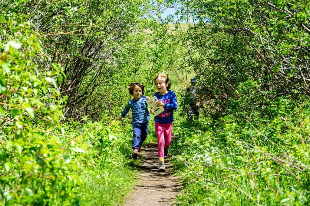 kids running on easy Bow Valley Provincial Park hike along Many Springs Trail