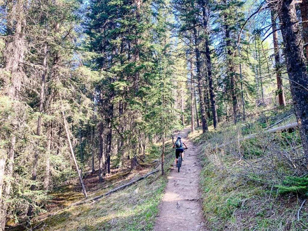 Lake Minnewanka Trails for hiking or biking
