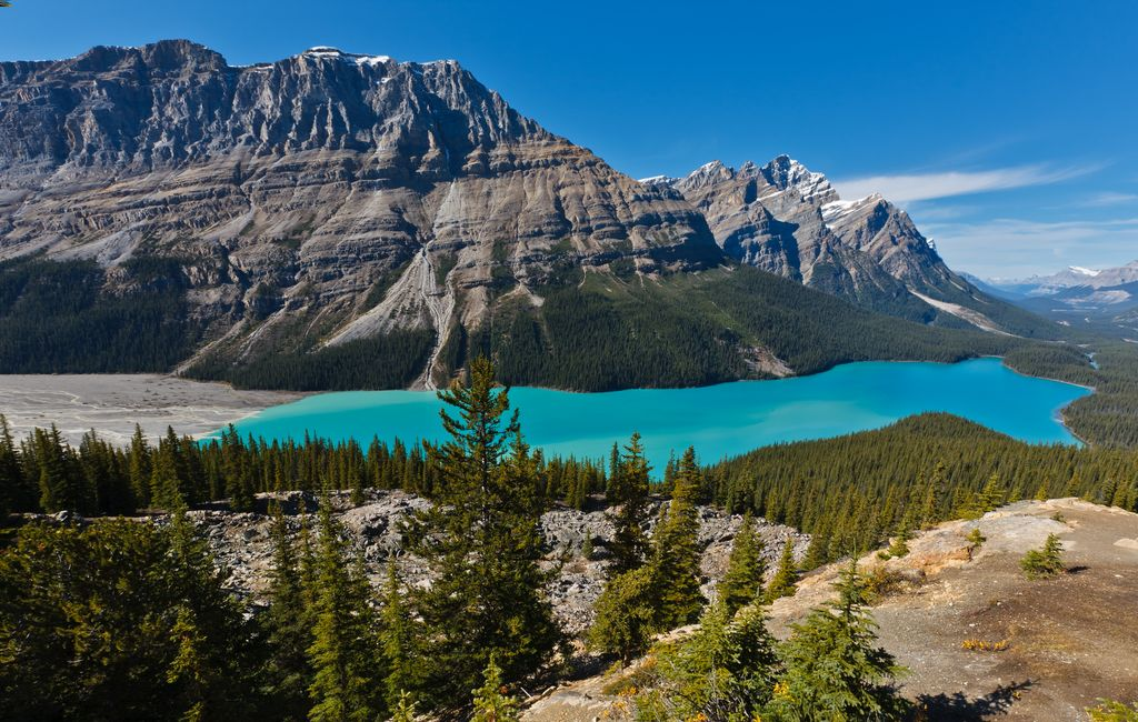 The incredible blue color of Peyto Lake is often seen on a luxury Banff tour