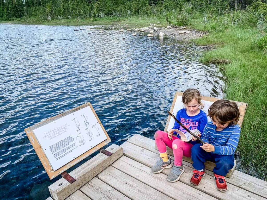 Many Springs Trail - easy hikes in Kananaskis with kids