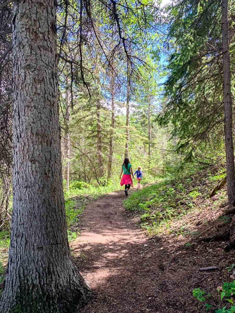 hiking Many Springs Trail in Kananaskis