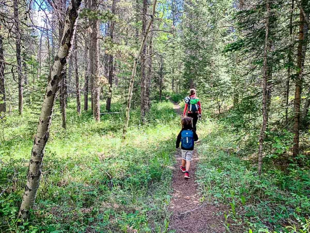 hiking Montane Interpretive Trail in Bow Valley Provincial Park