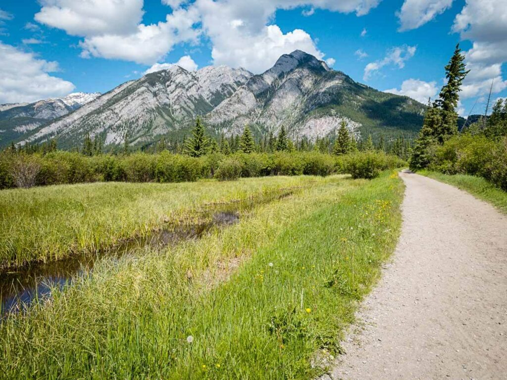 Mountain Views on Marsh Loop near Cave and Basin in Banff