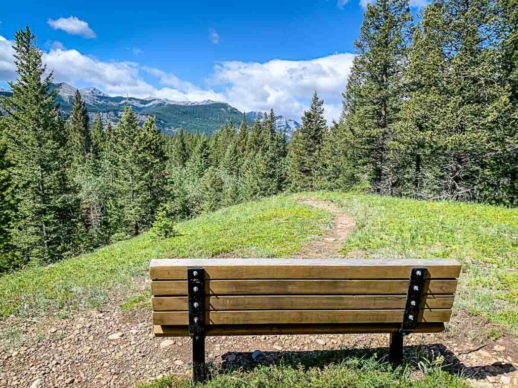 a bench with mountain views along Montane Interpretive Trail in Bow Valley Provincial Park, Kananaskis