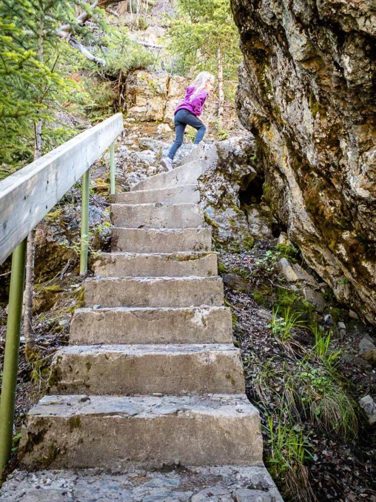 stairs along Sundance Canyon Banff Hike