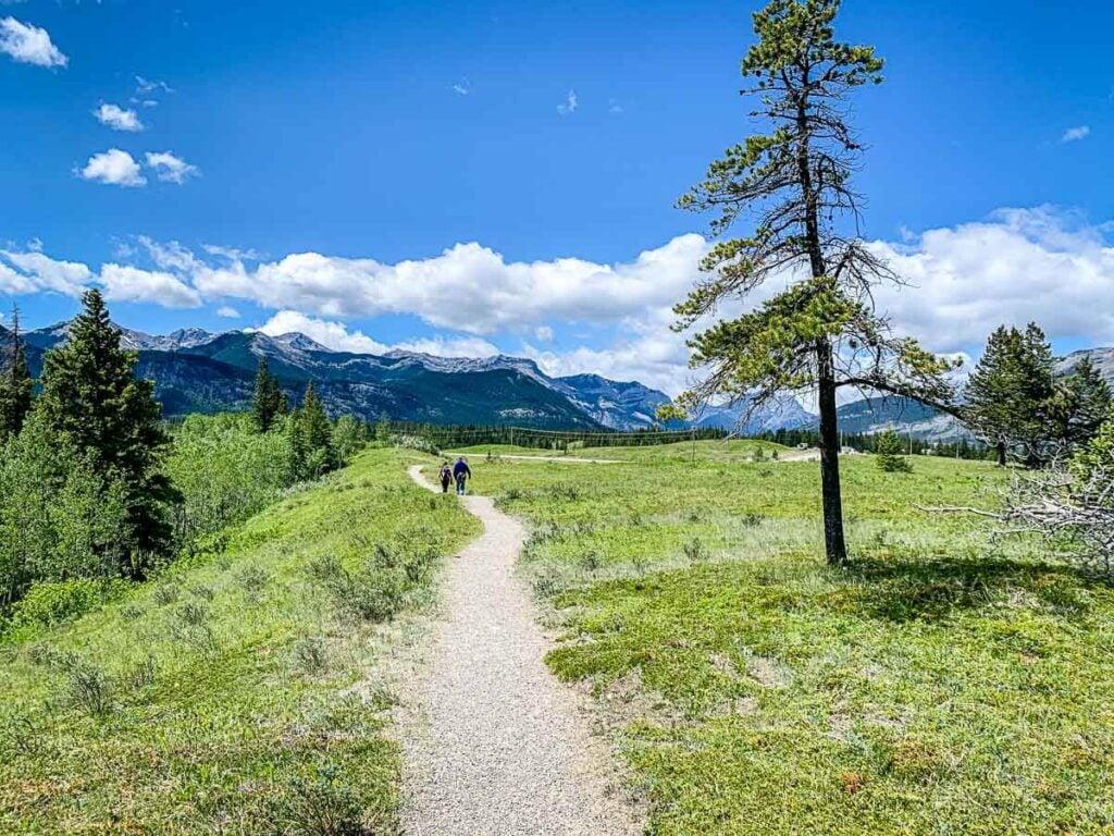hiking Flowing Water trail Kananaskis