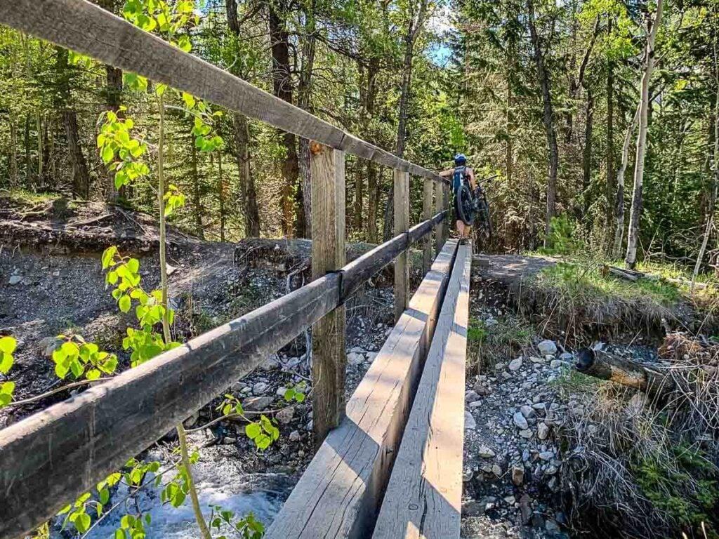 Bridge crossing on Lake Minnewanka hike