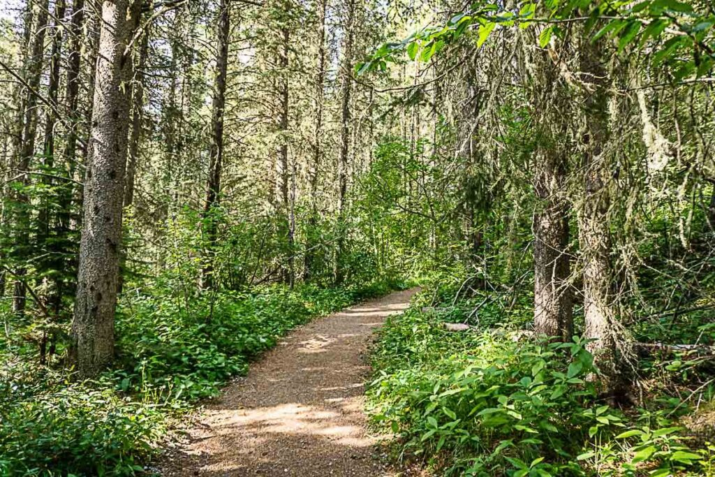 C Level Cirque Hiking Trail