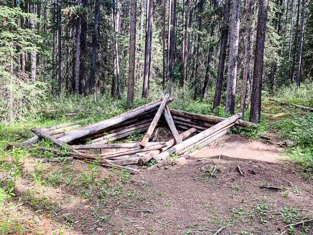 remains of Cabin on Castle Lookout hike