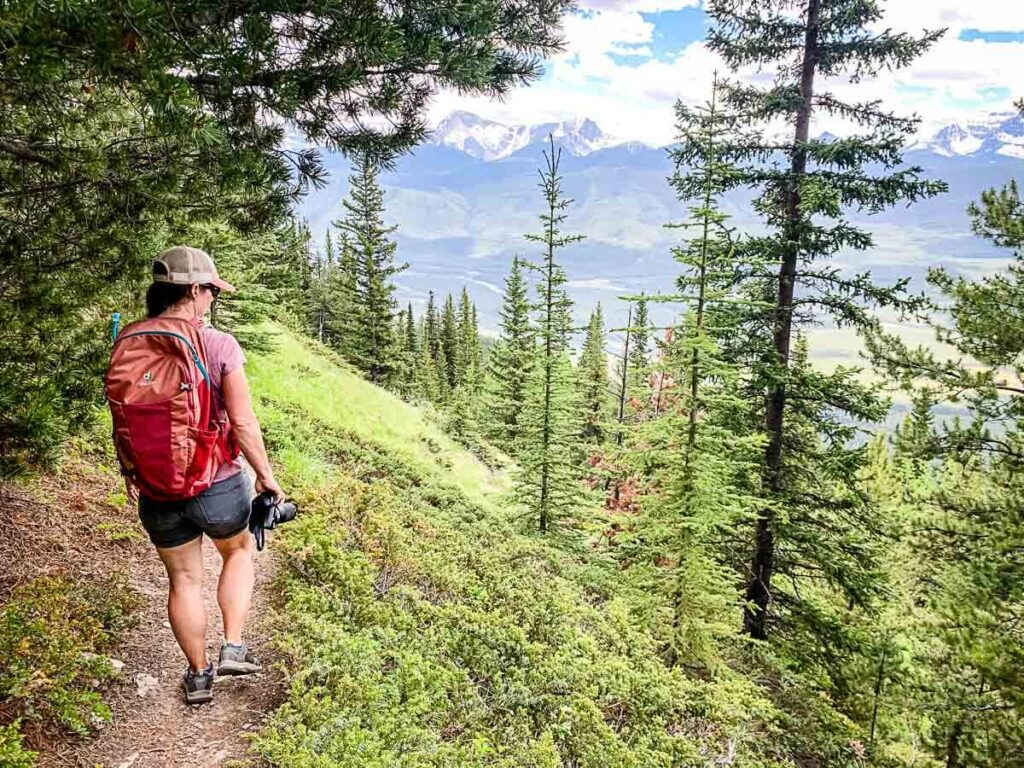 Mountain views on Castle Mountain Lookout Trail