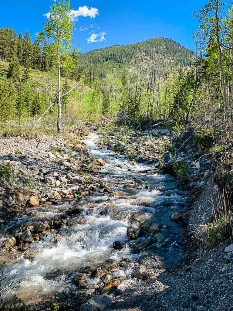Creek along lake minnewanka trail