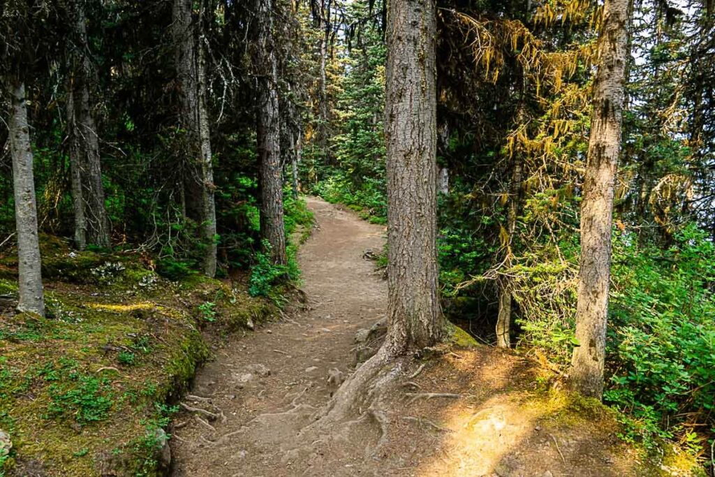 Easy Kananaskis hikes - Rawson Lake
