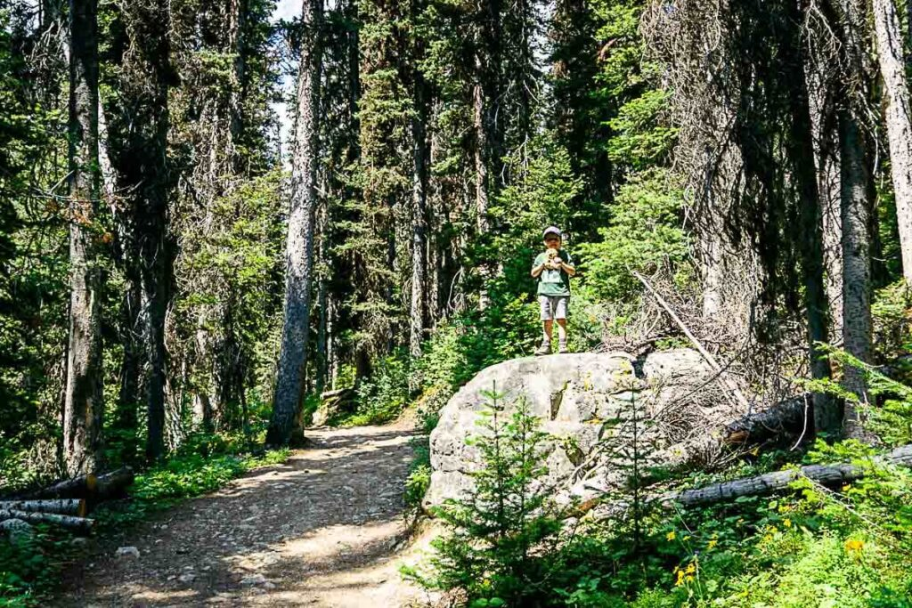Boy on large boulder while hiking Boom Lake trail in Banff