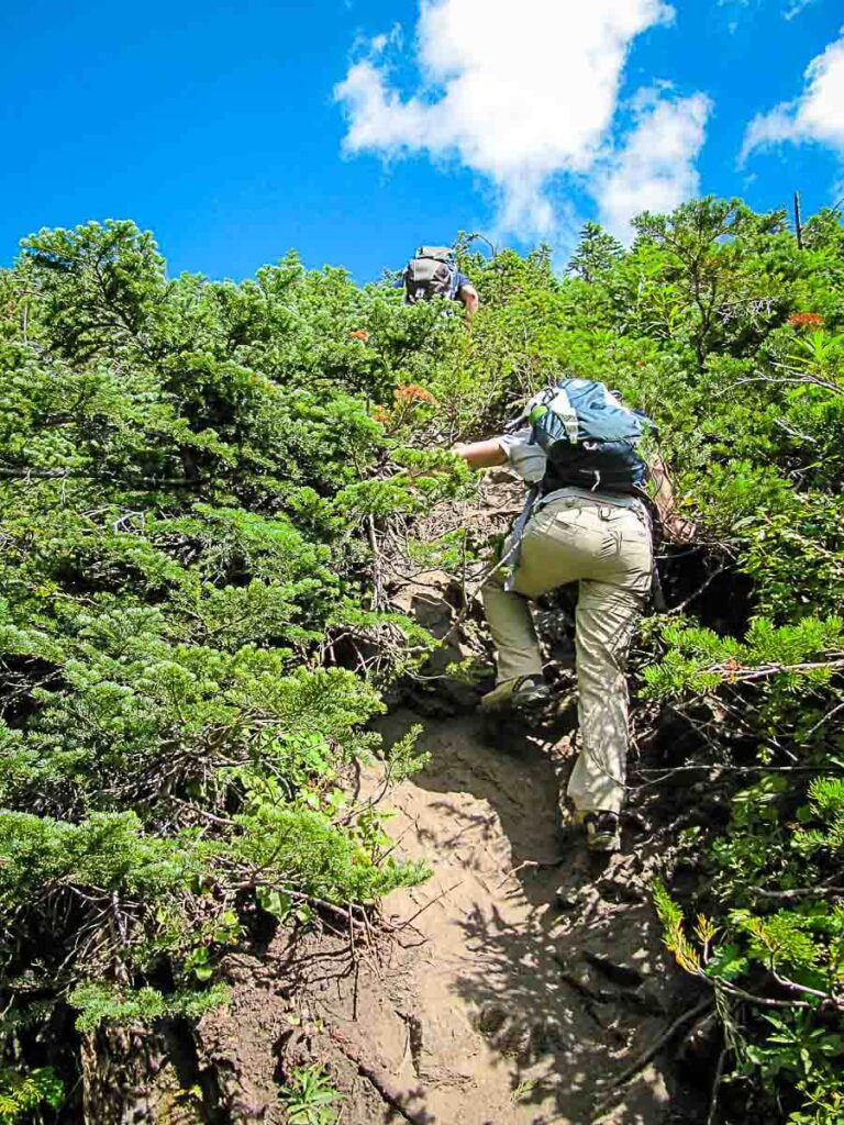 hiking boots are a must for steep Sarrail Ridge hike