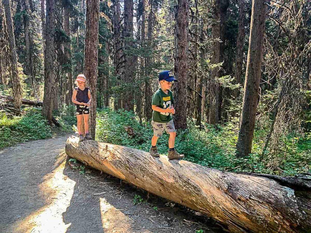 Kids walking on fallen tree on Boom Lake hike
