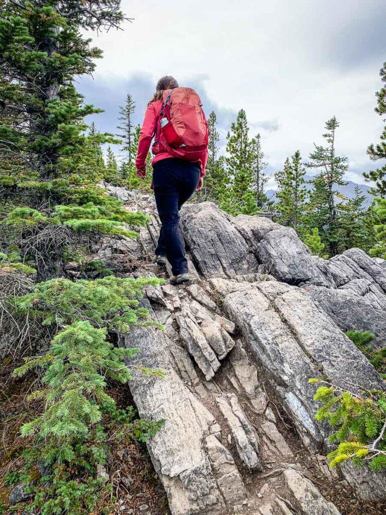 How hard is Wasootch Ridge Hike