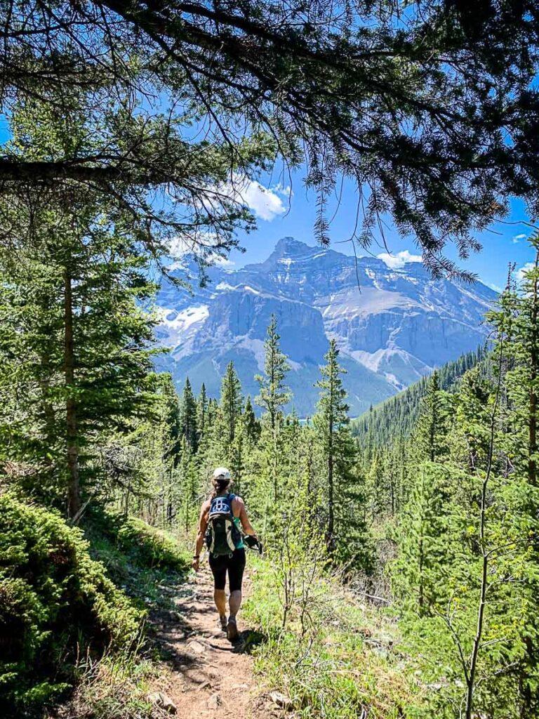 Aylmer Lookout trail to Lake Minnewanka Banff