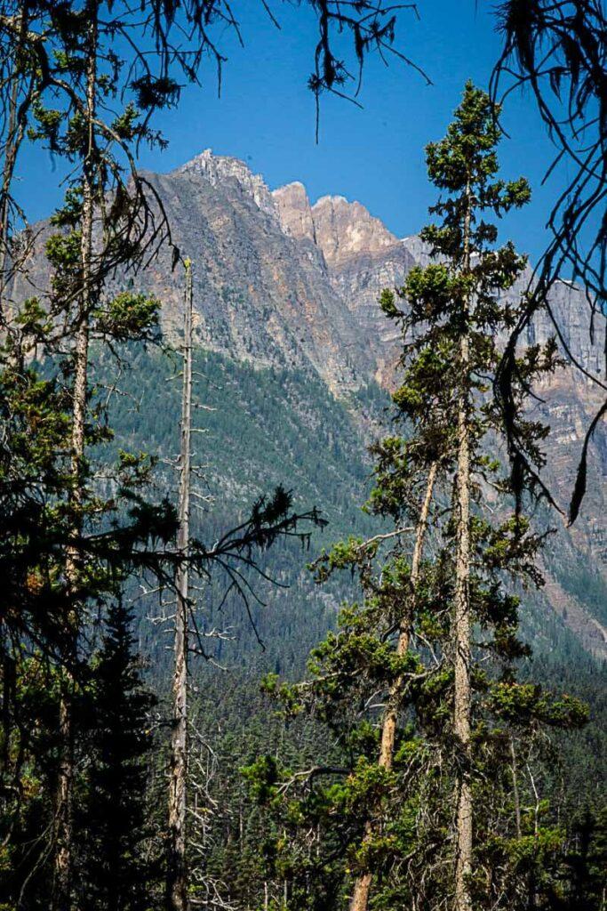 Mountain views through the trees while hiking to Boom Lake